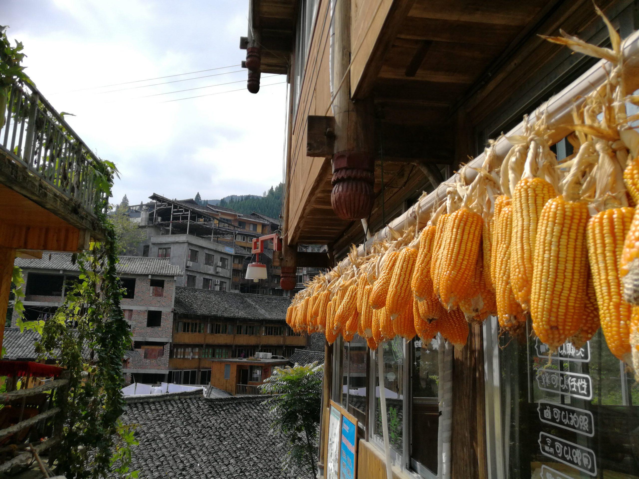 longsheng-rice-terrace-trip-10