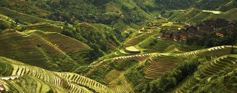 viewing-the-longsheng-andd-longji-rice-terraces-in-Guilin